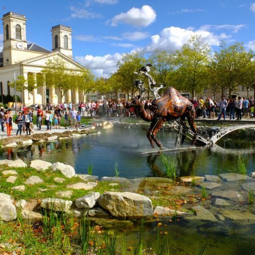 Les animaux de la Place Napoléon