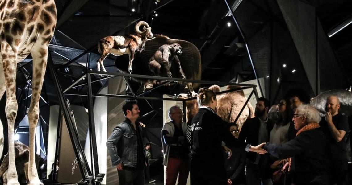 Musée des Confluences - Crédits Antoine Merlet